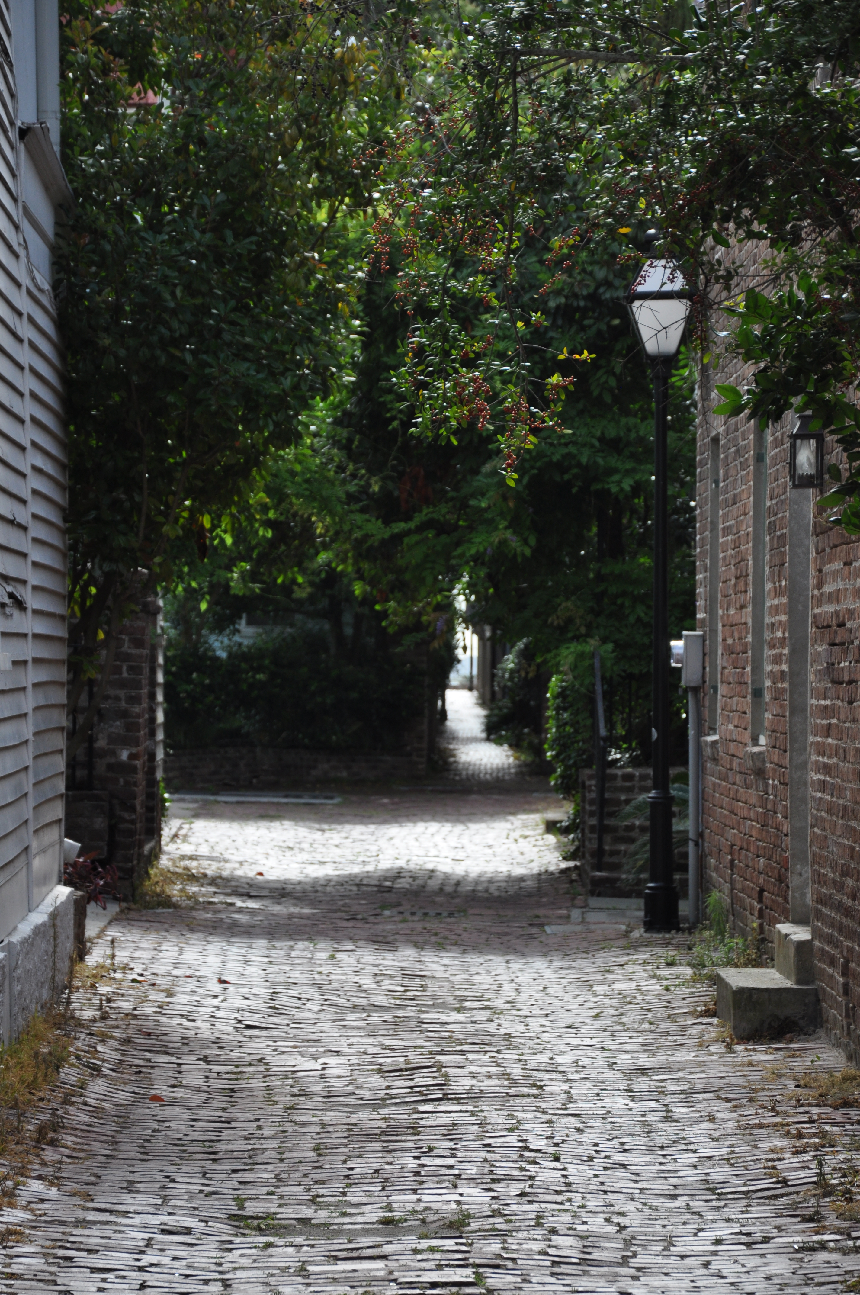 Stolls Alley, Charleston, South Carolina. Looking from Church Street.